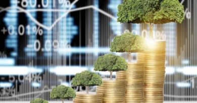Green finance: time for an institutionnal spark
