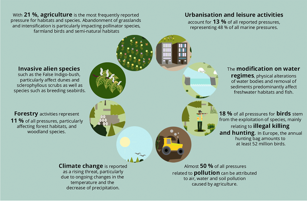 EEA State of Nature report No 102020 p70