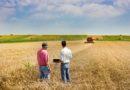 Cooperative agricole - CAP - PAC