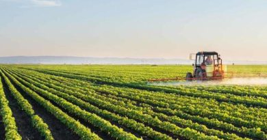 Green Deal - European Commission - EU - Europe - Food security - Pesticide - Agriculture - F2F - Farm to fork - Strategy -